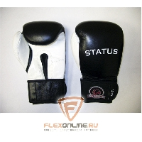 Боксерские перчатки Боксерские перчатки тренировочные на липучке 10 унций от Status