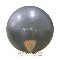 Медицинболы и мячи Мяч гимнастический серый 55 см с насосом от Status